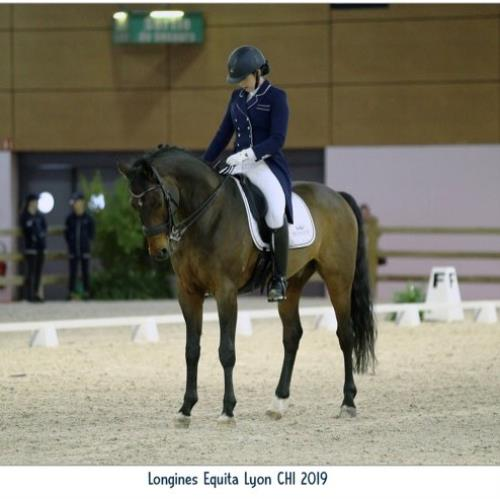 Surval News: Surval Equestriennes compete at Lyon International Horse Show